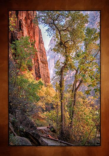 Canyon 20x30