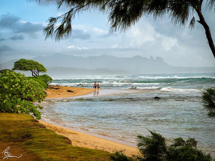 Hawaii-513-2